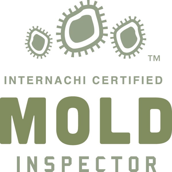 Colorado Springs mold inspection near me